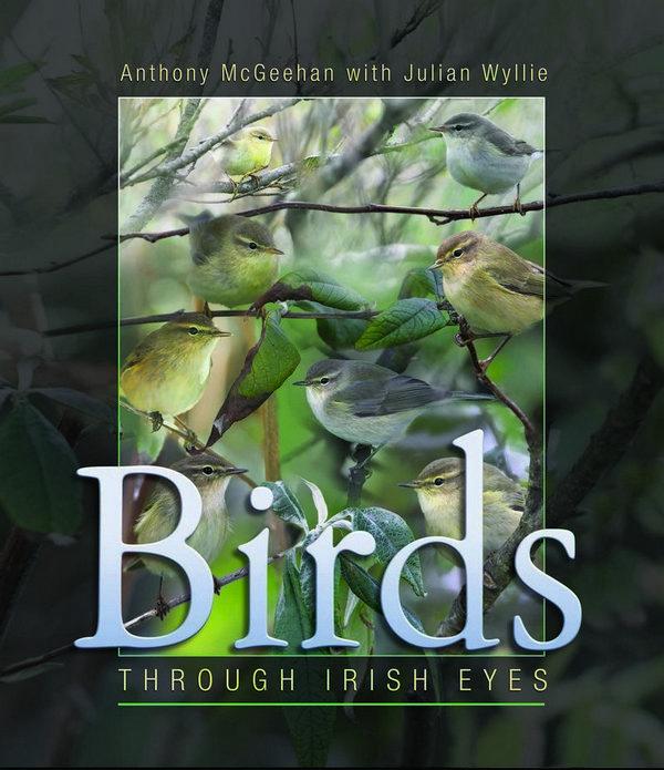 Birds - Through Irish Eyes .