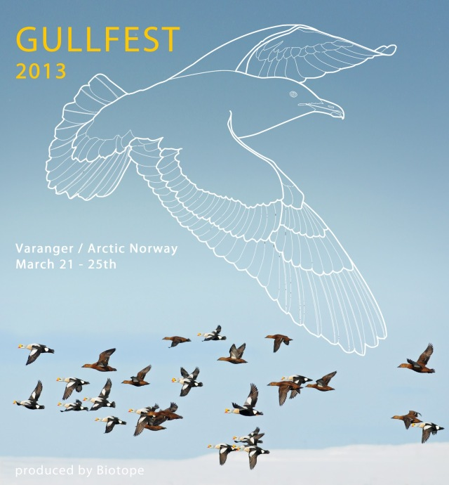 gullfest 2013 poster 1