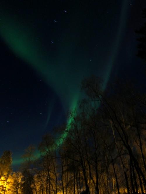 aurora 20.3.13