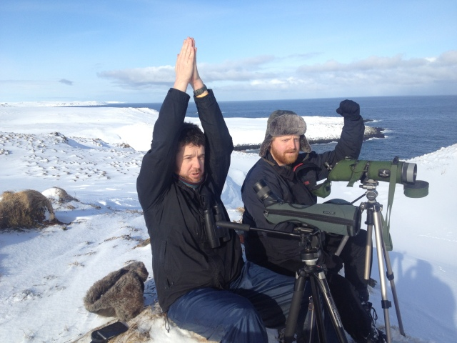 Jonny 'rare magnet' Rankin (left) with Sir Robert  'of the Arctic' Yaxley celebrating after seeing their first Killer Whales in Arctic Norway!